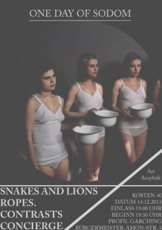 Snakes And Lions  +  Ropes. + Contrasts + Concierge